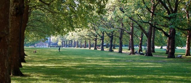Свежи идеи за по-добро лято в Англия